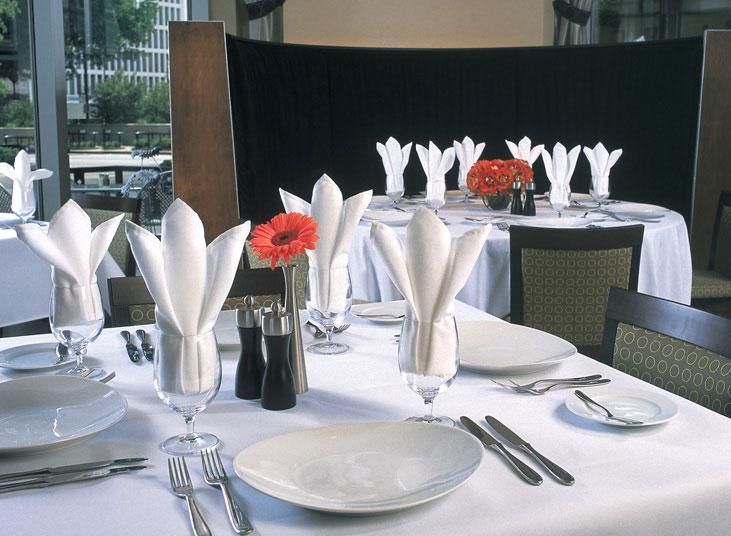 Visa Plus Table Linens By Milliken